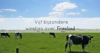 Vijf bijzondere weetjes over Friesland
