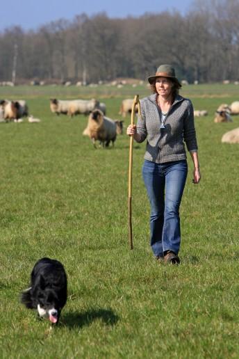 schaapherderin Hilde Groen 4