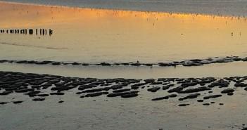 Ondergaande zon in Fryslân