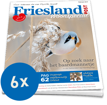 Friesland Post halfjaarabonnement (6x)