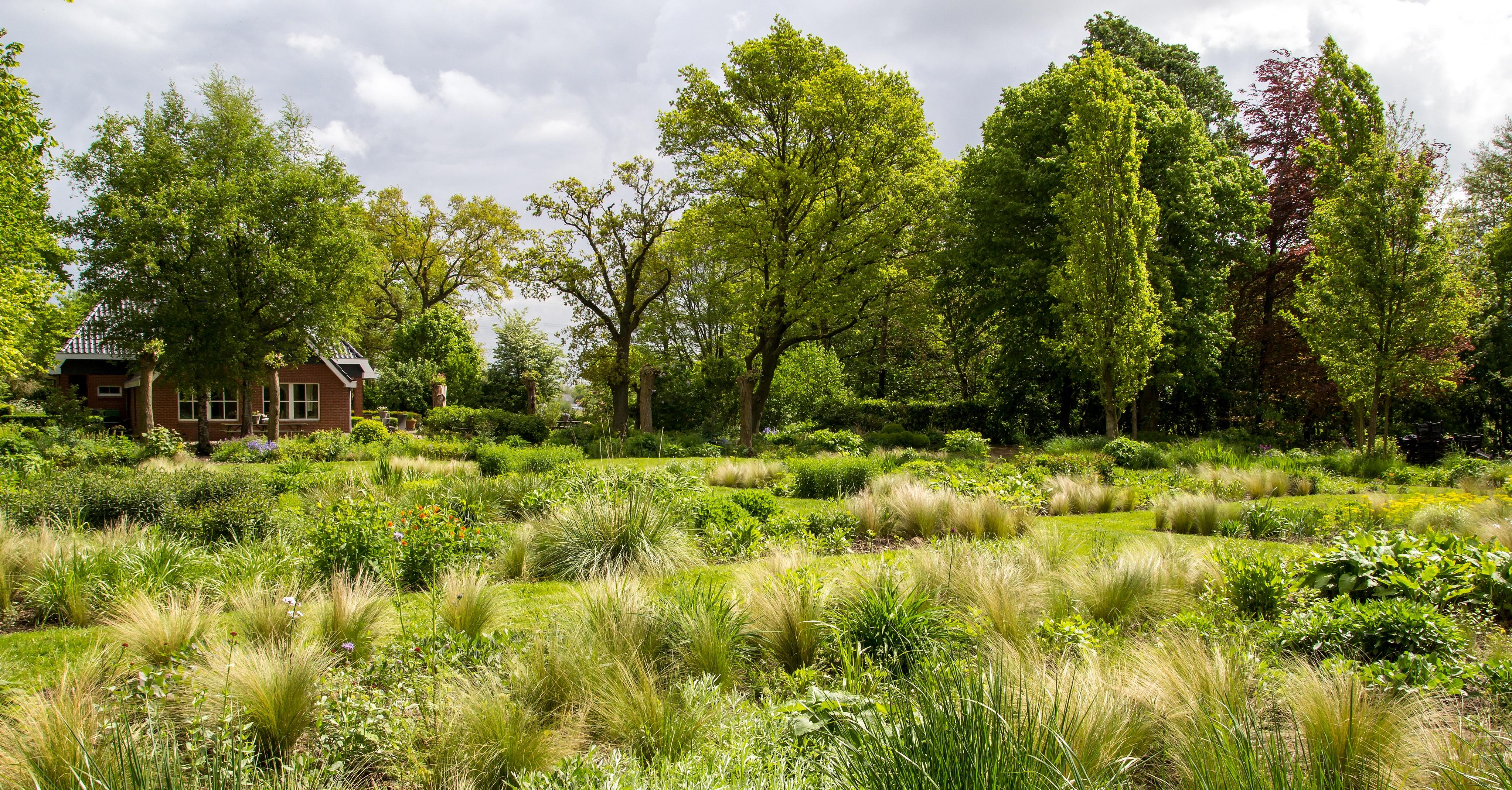 De gecomponeerde tuin