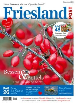 Cover (november editie)