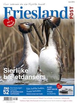 Cover juni
