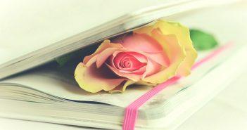 Poëziealbum versjes
