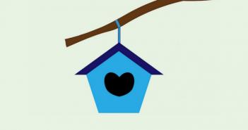 Maak snel en eenvoudig je eigen vogelhuisje