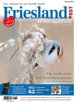 Cover (februari 2017)