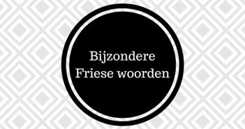 Bijzondere Friese woorden