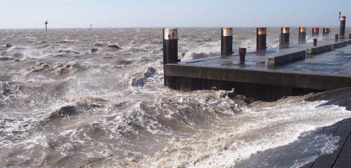 Lezersfoto: op de pier in Holwerd