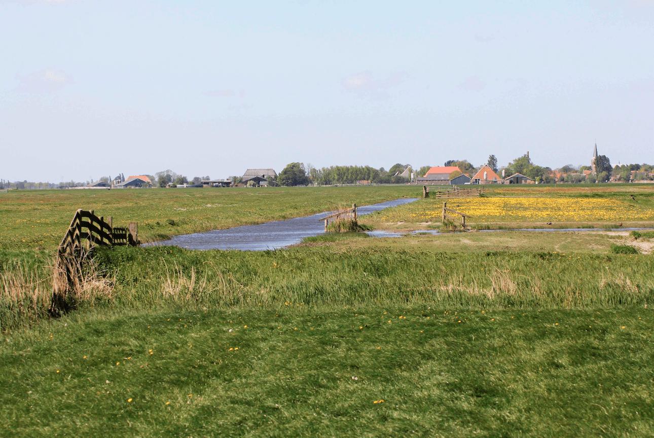 Friese natuurorganisaties maken zich zorgen
