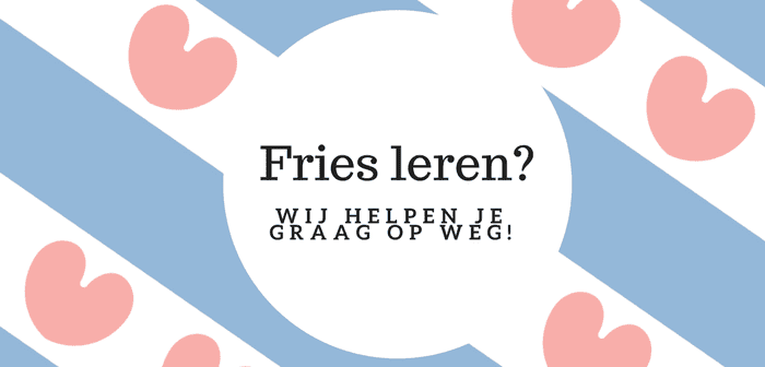 Fries leren