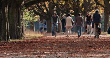 Wat te doen in Friesland op 9, 10 en 11 november 2018?