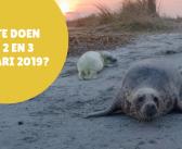 5 activiteiten in Friesland op 1, 2 en 3 februari 2019