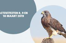 Wat te doen in Friesland op 8, 9 en 10 maart 2019?