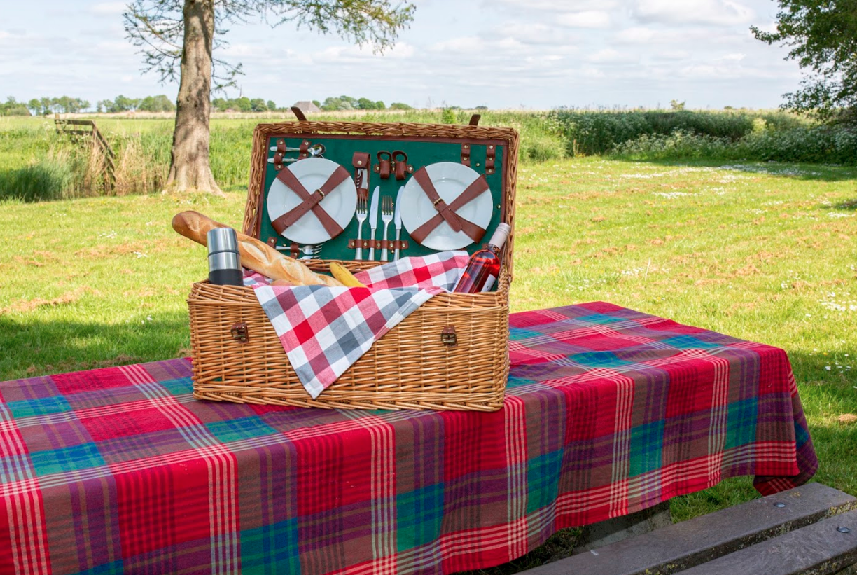 3 parels van picknickplekken in Fryslân
