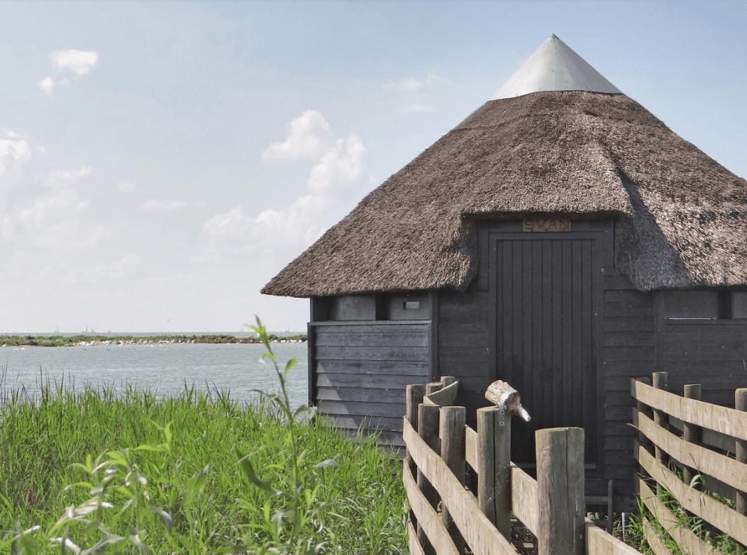 Vijf vogelkijkpunten langs de IJsselmeerkust