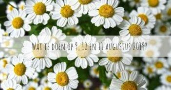 Wat te doen in Friesland op 9, 10 en 11 augustus 2019?