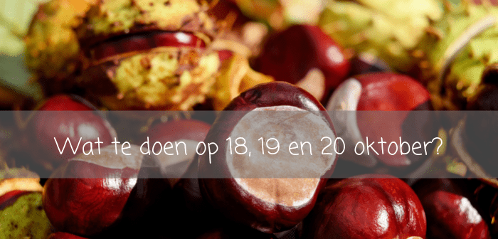 Wat te doen in Friesland op 18, 19 en 20 oktober?