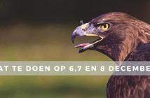 Wat te doen op 6, 7 en 8 december in Friesland?
