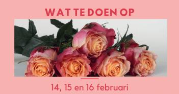Wat te doen in Friesland op 14, 15 en 16 februari