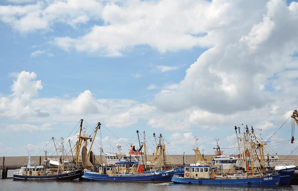Duik mee in de wereld van de garnalenvisserij