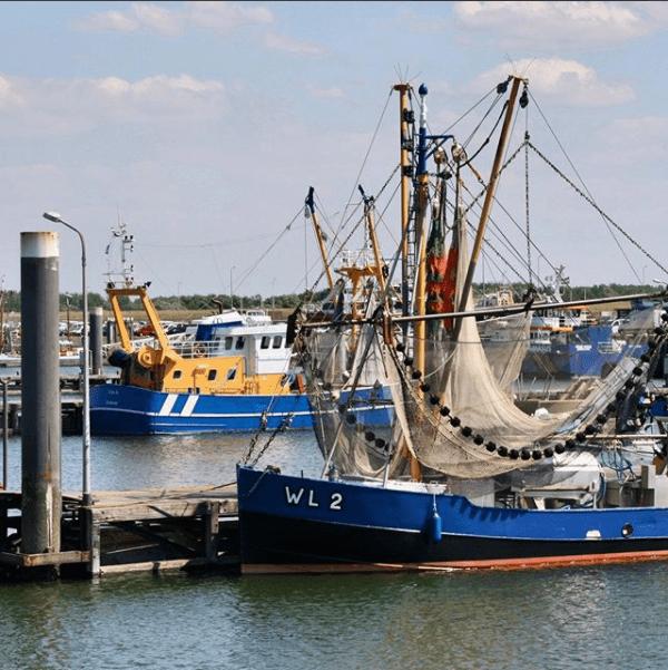 Haven Lauwersoog audiotour